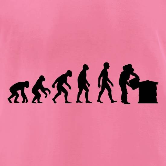 Evolution Of Man Bee Keeper t-shirts for ladies