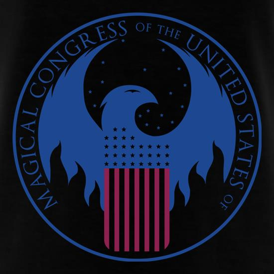 Magical Congress of The US T-Shirts for Kids