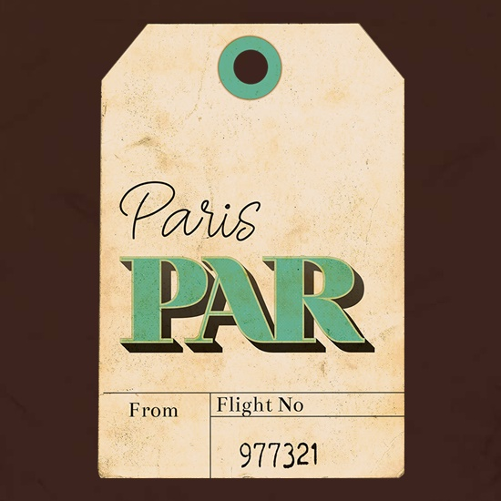 Paris Luggage Tag t shirt