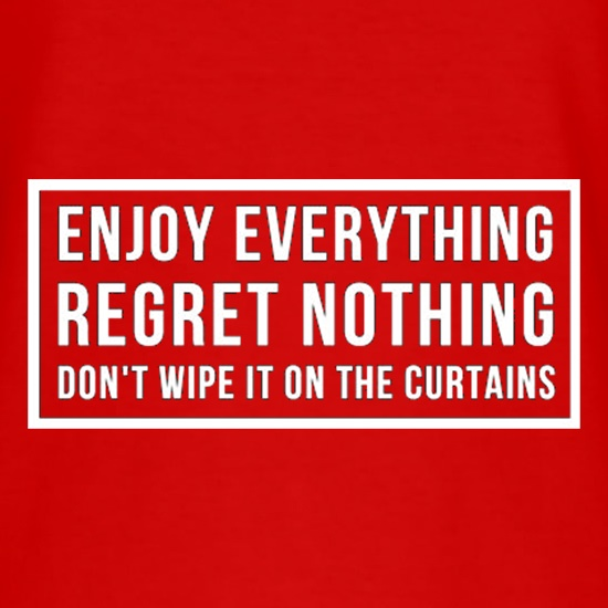 Enjoy Everything Regret Nothing Don't Wipe It On The Curtains t shirt