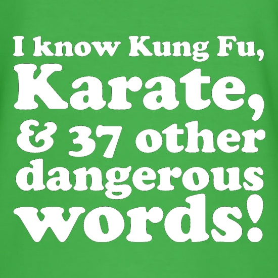 I know Kung Fu, Karate, & 37 other dangerous words! t shirt