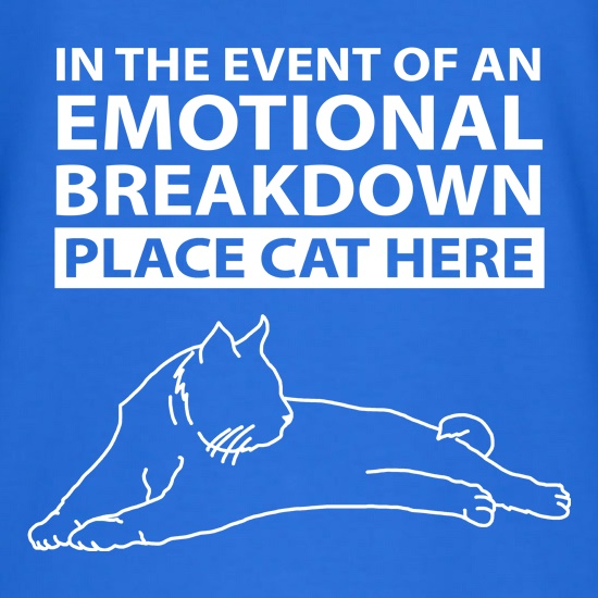 In Case Of Emotional Breakdown Place Cat Here t shirt