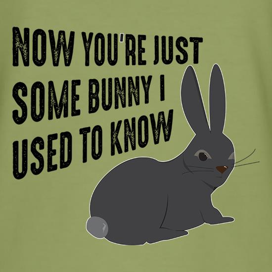 Now You're Just Some Bunny I Used To Know t shirt