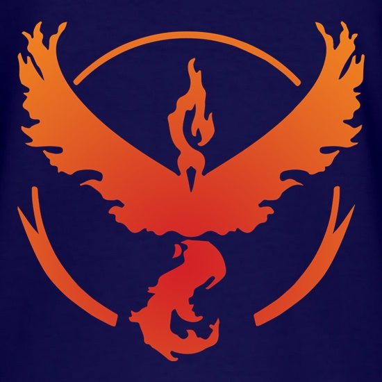 Team Valor t shirt